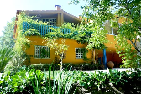 Quinta das Tamengas- Tentúgal  - Casa de campo