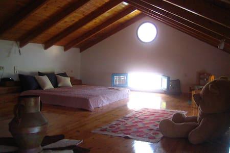 Ηρεμο σπίτι ή δωμάτιο Φρίκες-Ιθάκη - Ithaki - House