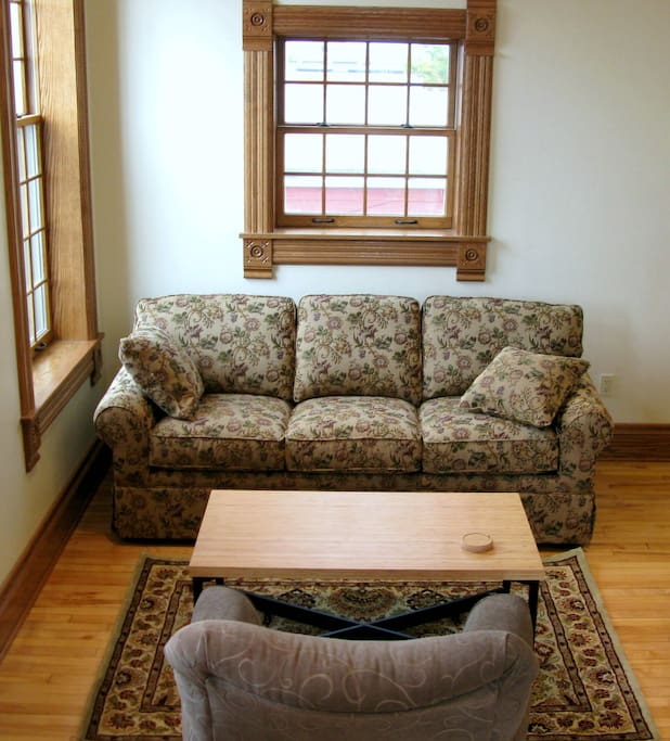 Queen-size pullout couch
