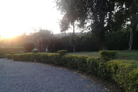 Quiet serene place! - House