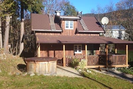 Sauna cottage 1000 NOK per night - Vang - 小木屋