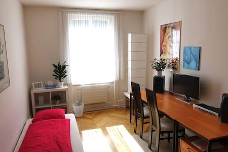 Gästezimmer in Stadtwohnung - Wohnung
