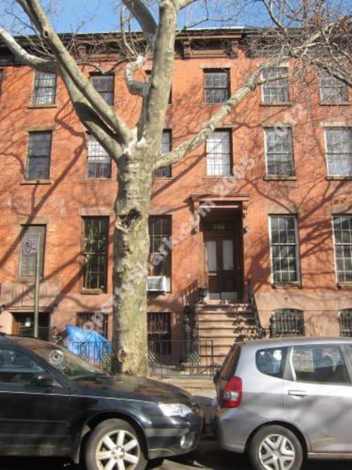 Beautiful Boerum Hill, Brooklyn quiet tree lined street in the heart of Brooklyn.