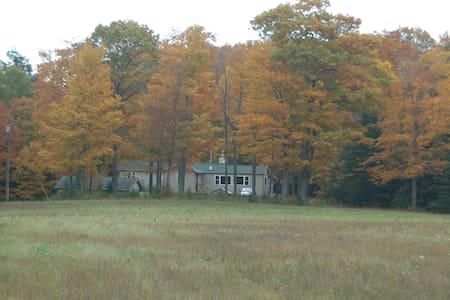 Hunting cabin on wooded parcel - Cedarville - Stuga