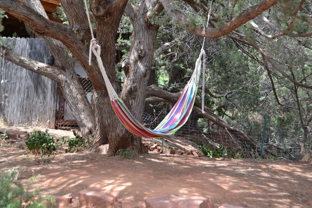 Peaceful hammock