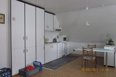 1 Zimmer Apartment mit Küche 48 m2 - Pis