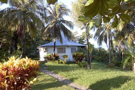 Natural Hideaway - Port Antonio - House