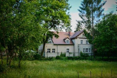 Dom Zamęt - House