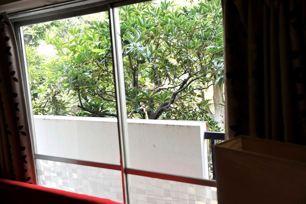 View outside of first bedroom with beautiful green trees blowing in the wind - very quiet area but in heart of the city