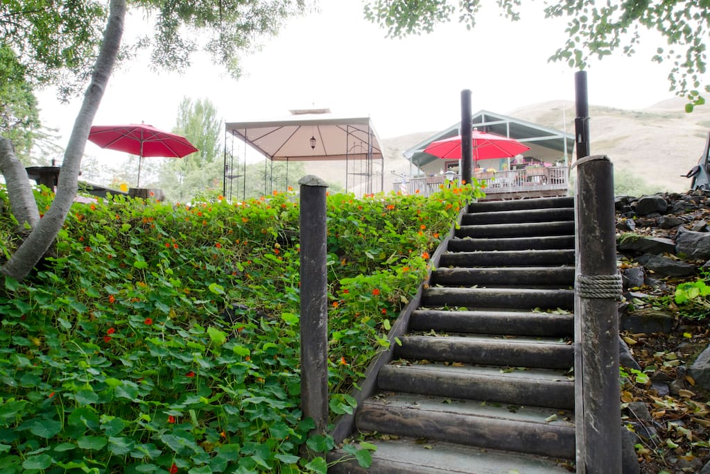 Stairway to the River.