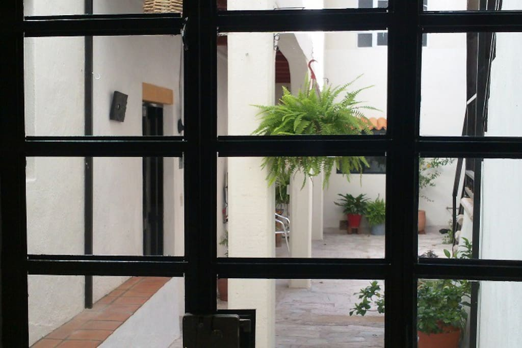 Partial view of courtyard through iron and glass door