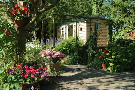 Delightful and Cosy Shepherds Hut - Bed & Breakfast