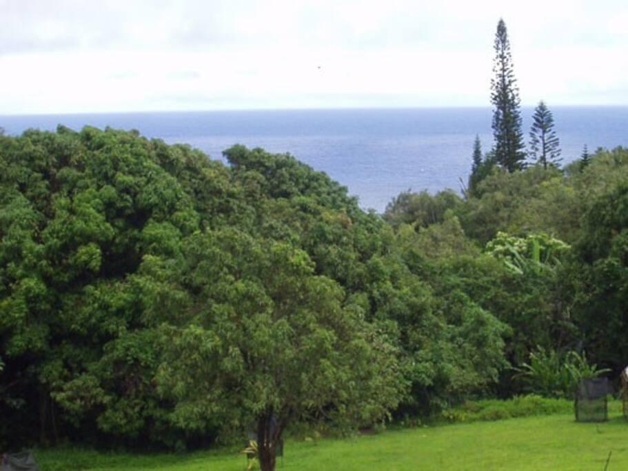 Scandinavian Chalet, Maui, Hawaii