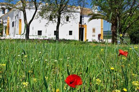 HACIENDA TIPICA ANDALUZA DEL S.XV - Castle