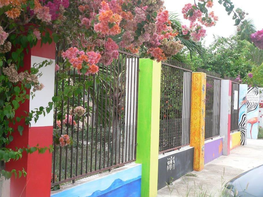 Het herkenningspunt van Bed and Art2gether, de kleurrijke tuinmuur