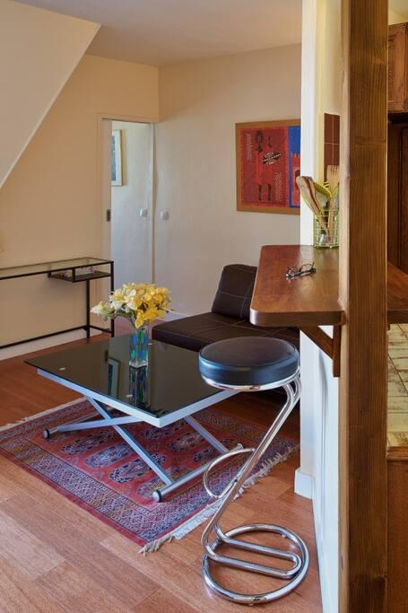 Living room and kitchen bar. - Vue du salon avec bar. Au fond il y a la chambre.