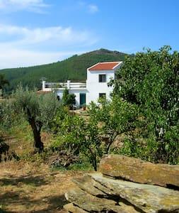Casa Bacoco - Dom