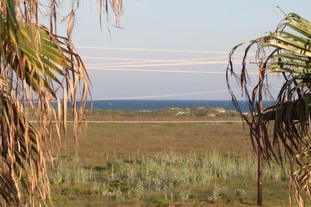 Luxury Oceanview, Great Amenities! - Loftlakás