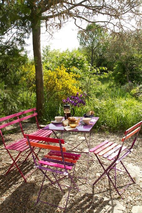 Terrasse coté Est - idéale pour le petit déjeuner