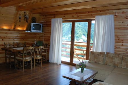 Holiday House Vrh K1 - Ravna Gora - Villa