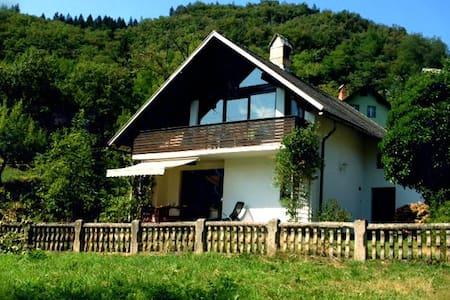 Apartment with nature in your hand - Bohinjska Bela - Apartment