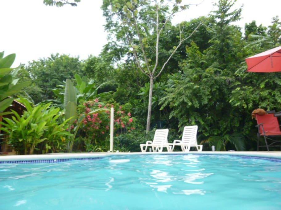 Senderos de Paz - Pool Bungalow Uno
