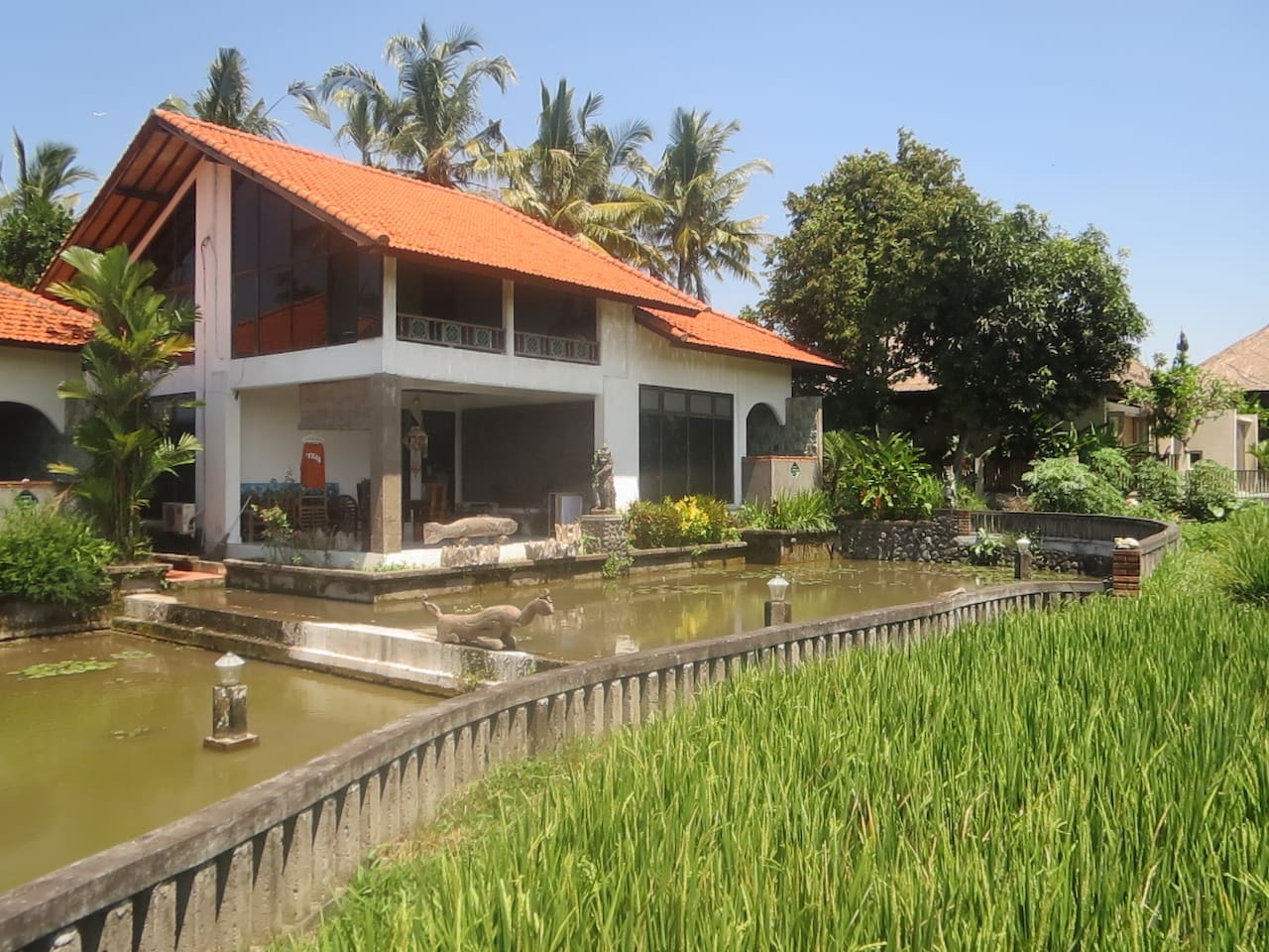 Exterior House with lotus pond and ricefield