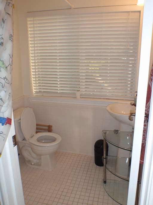 The bathroom is small but very efficient. There is a corner shower behind the curtain.