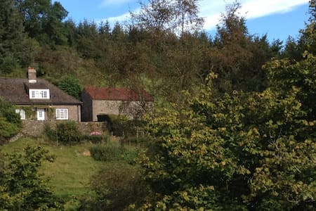 Cosy cottage in the Brecon Beacons National Park - Forest Coal Pit
