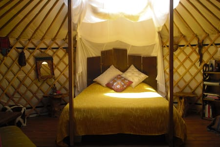 Glamping yurt and tipi retreat  - Espinhal - Yurt