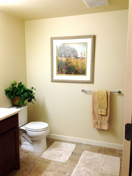 the bathroom is new and modern as well.