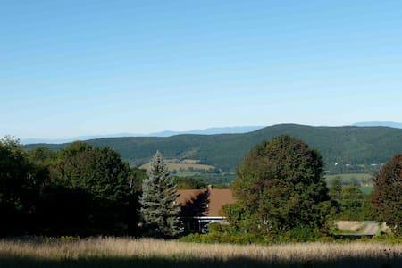 estate on 11 acres - Hillsdale - House