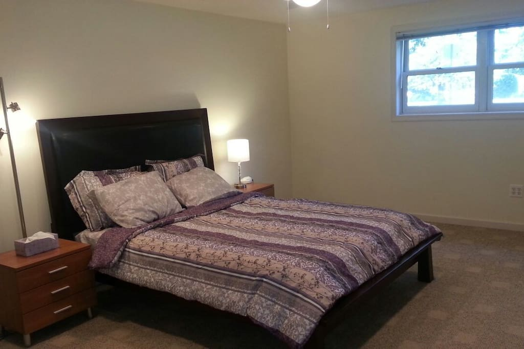 Queen bed, with celing fan, chest of drawers, full lenght mirror, and monstrous closet.  225 sqft