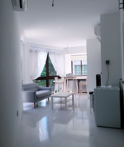 Brand new minimalist apt in Orchard - Singapore - Apartment