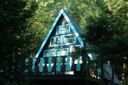 Charming A-Frame - Southern Vermont - Ház