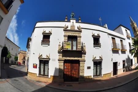 PALACIO SIRVENTE DE  MIERES - Andújar - Pis