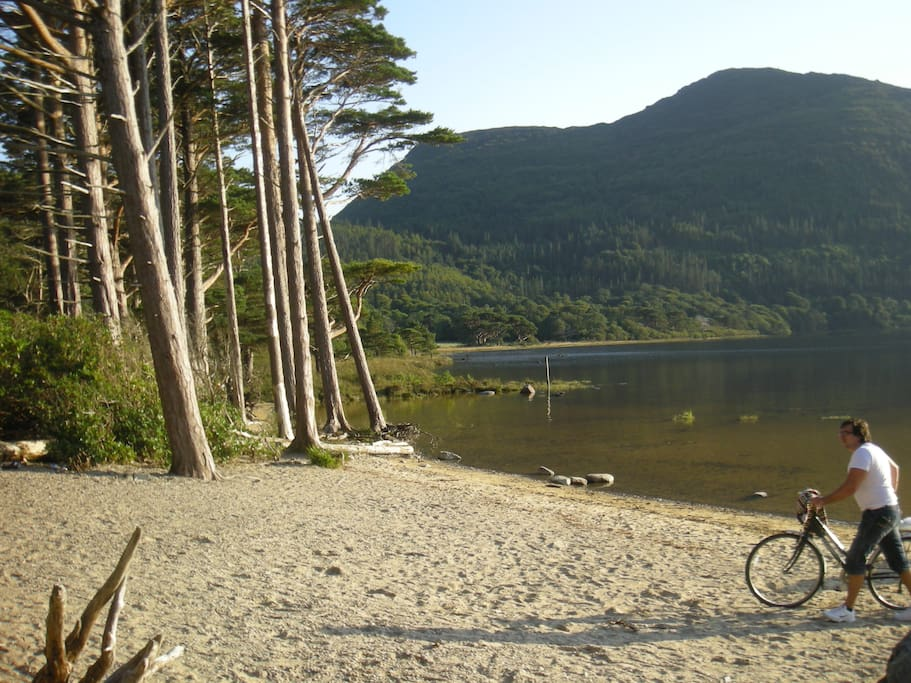 Beach on Muckross Lake. Beautiful at any time.