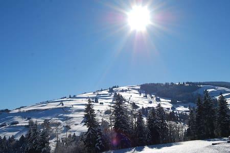 Ferienwohnung im Wander / Skigebiet - Apartemen
