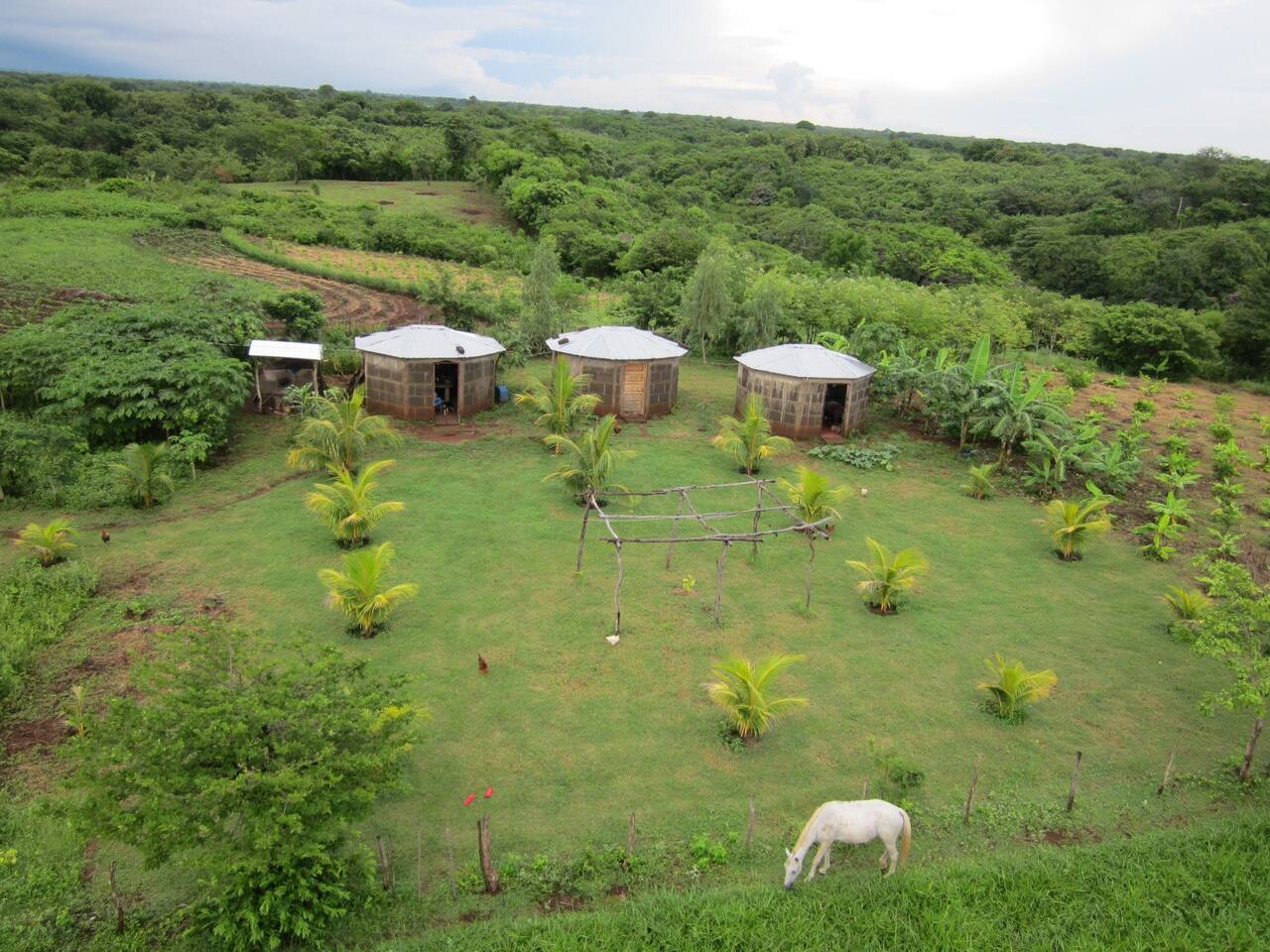 Come stay at our eco farm in your own private bungalow.