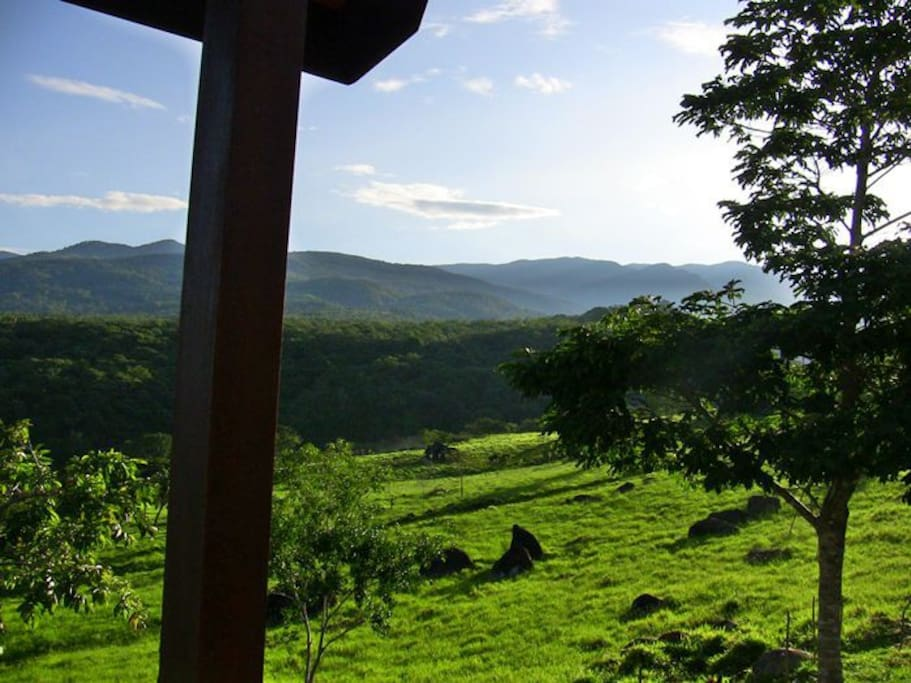 Eastern view of the Finca pasture lands, Talamanca mountain range and La Amistad International Park; from the Talamanca cabin.