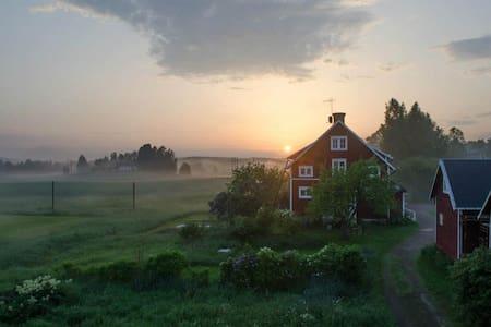 Trad Swedish living, rustic furnish - House