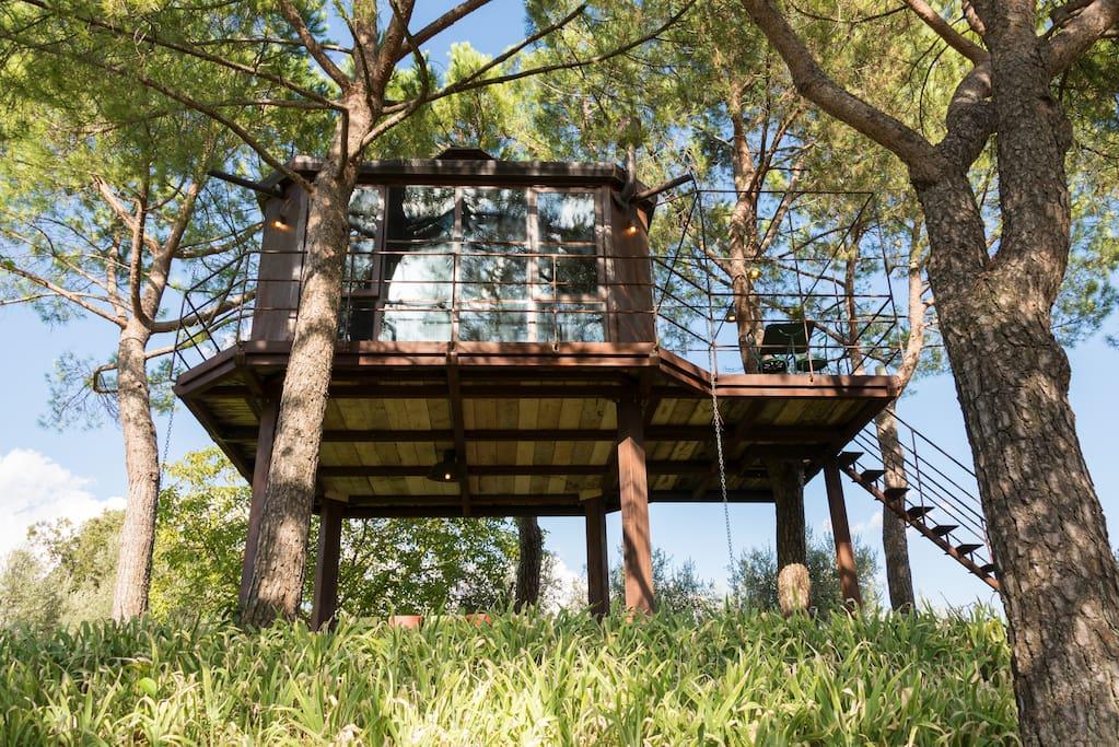 Case sull 39 albero in toscana 3 idee per dormire sugli alberi for Case in legno sugli alberi