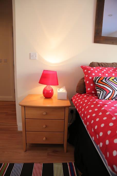 Large En Suite Room in Dublin City!