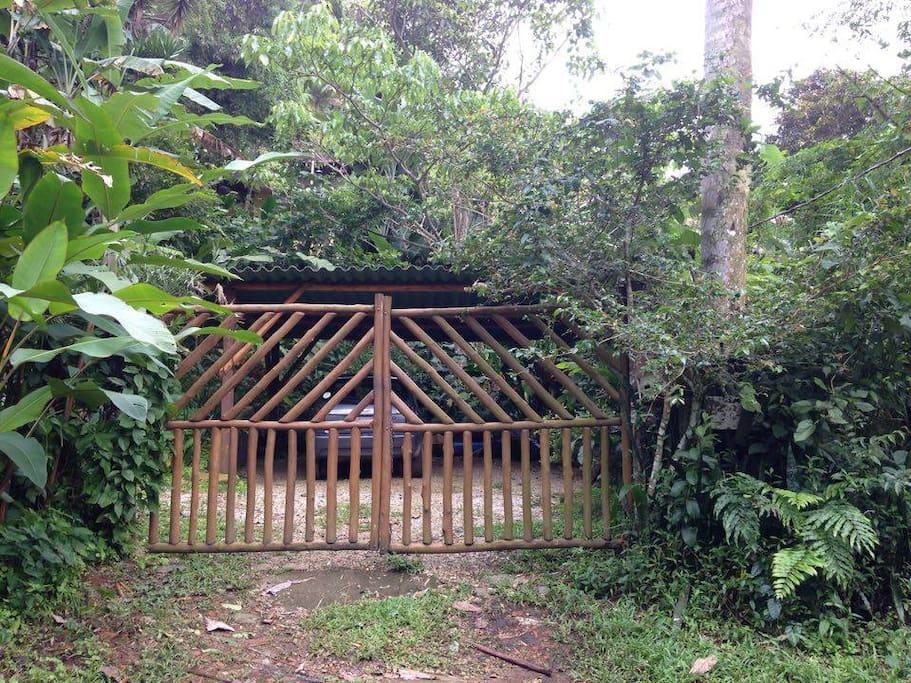 A entrada / the entrance - Tv. Willi