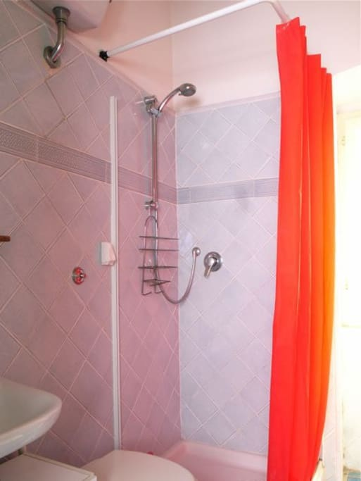 Standard bathroom with shower