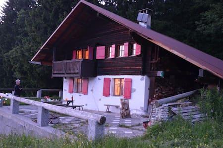 Unique Swiss mountain chalet - Les Diablerets - Cabaña