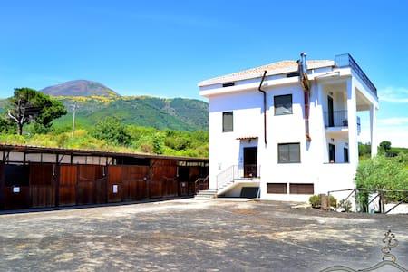 Villa sul Vesuvio vicino Pompei Sorrento e Amalfi - Terzigno - Appartamento