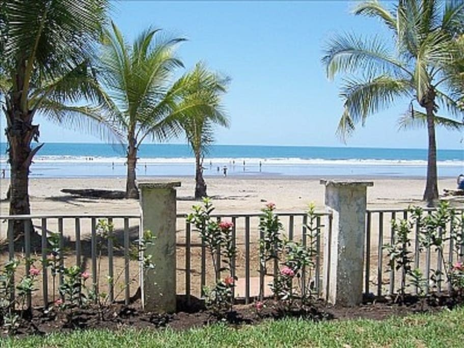 Terrace view before new hedge fills in shows just how close the beach really is!