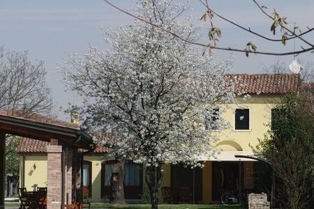 Particolari del Brenta - Apt Rose