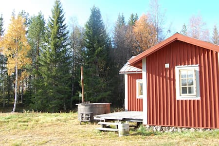 cottege in the mountain lake boat   - Härjedalen
